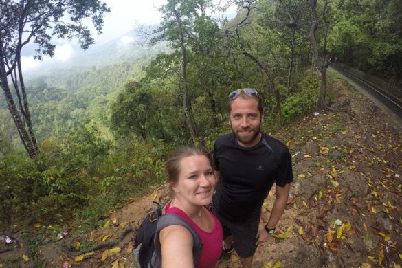 Indonesien Lombok Affenwald