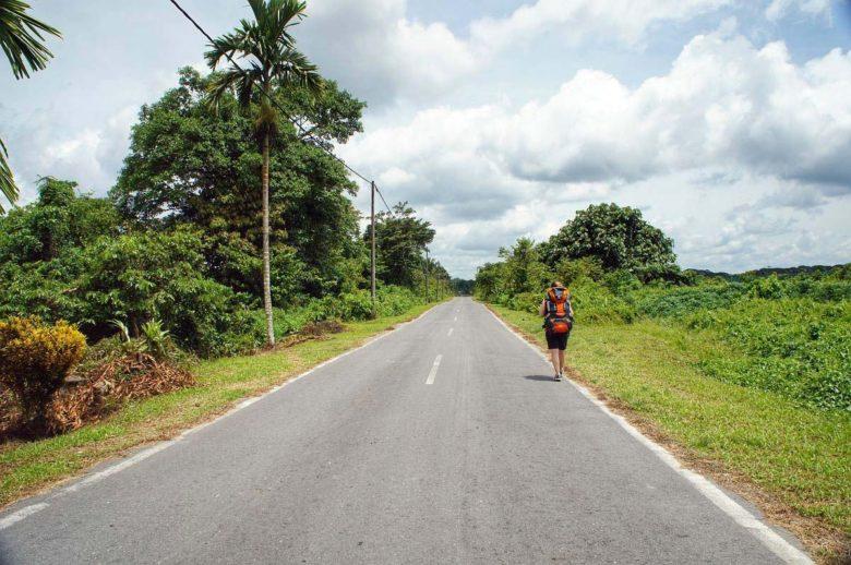 Weg zum Mulu Nationalpark