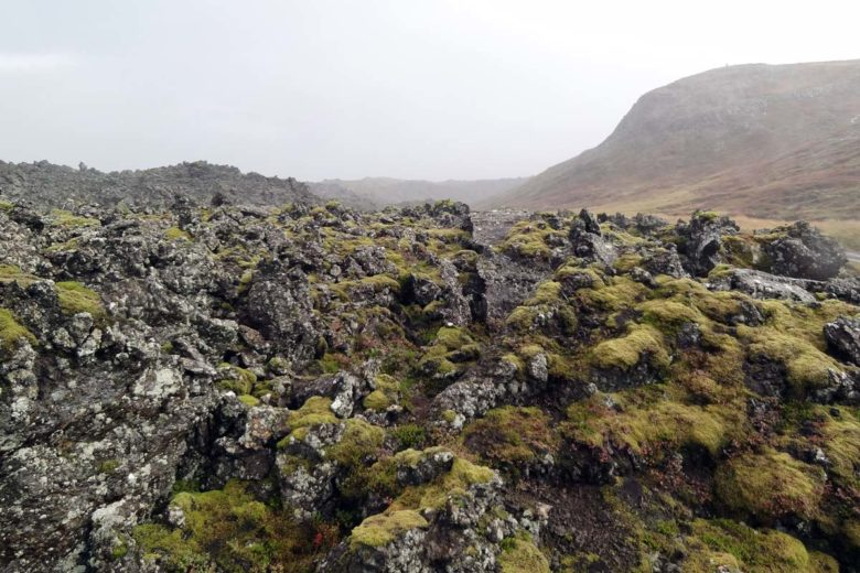 Island Berserkjahraun Lavafelder