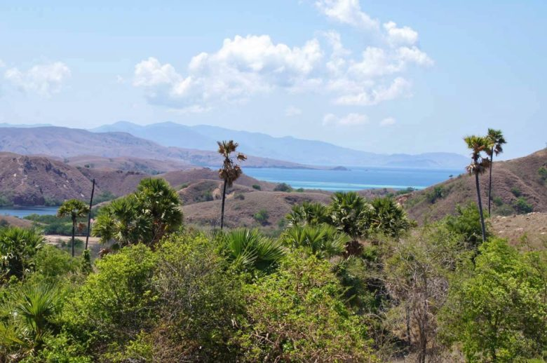 Komodo Nationalpark - Aussicht