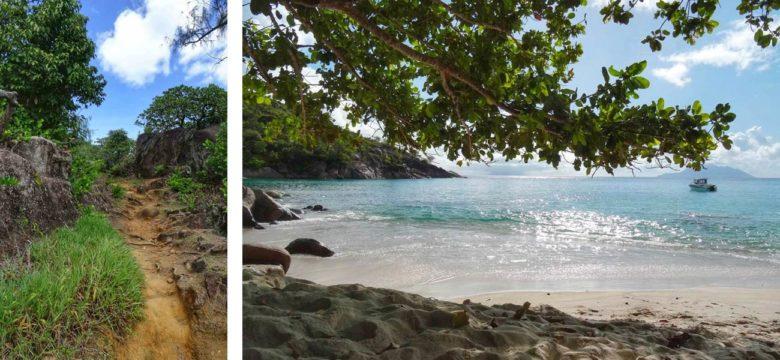 Seychellen Strand - Anse Major