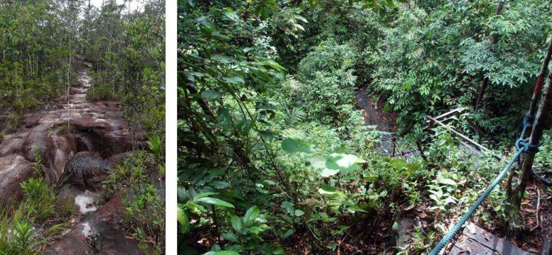 Bako Nationalpark Felsen und Dschungel