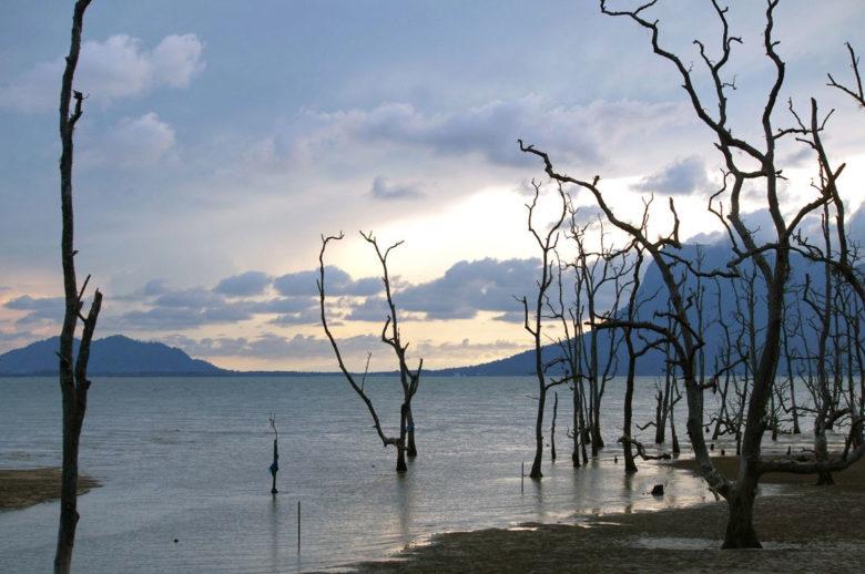 Lagune am Bako Nationalpark
