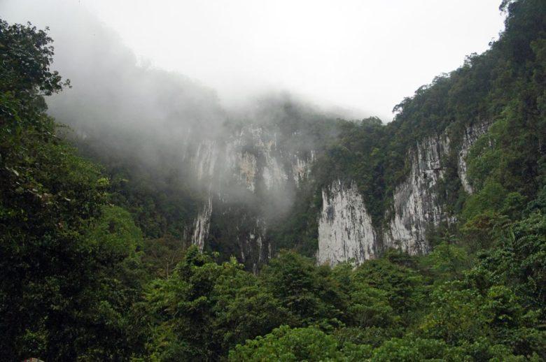 Mulu Nationalpark Bat Exodus
