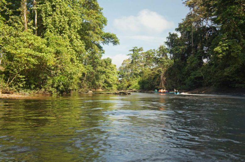 Bootsfahrt auf dem Melinau River