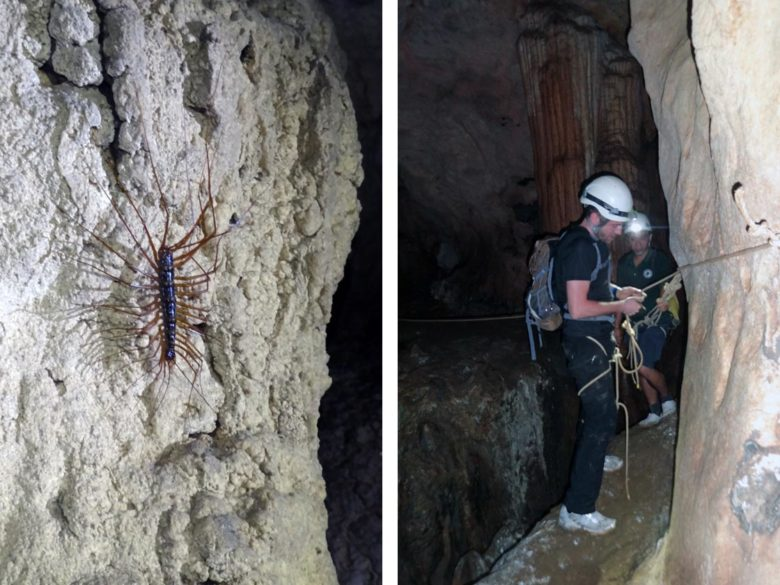 Adventure Caving - Stone Horse Cave
