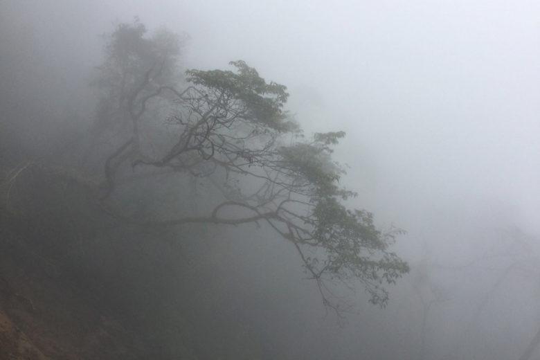 Nebel am Abgrund des Vulkan Maderas