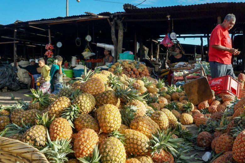 Früchte auf dem Mercado Municipal in Masaya