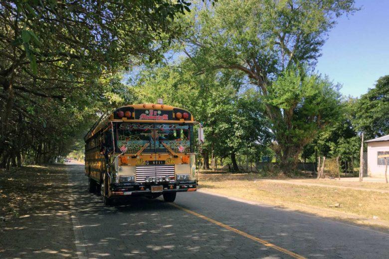 Busse auf Ometepe