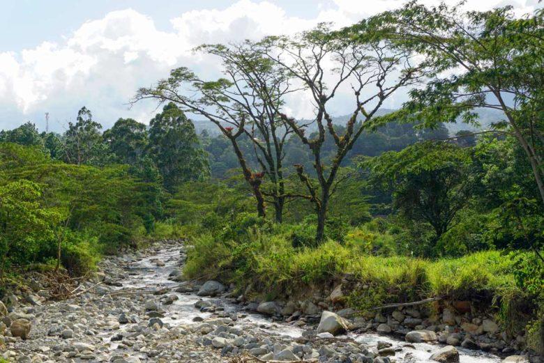 Fluss bei Boquete - Panama Hochland