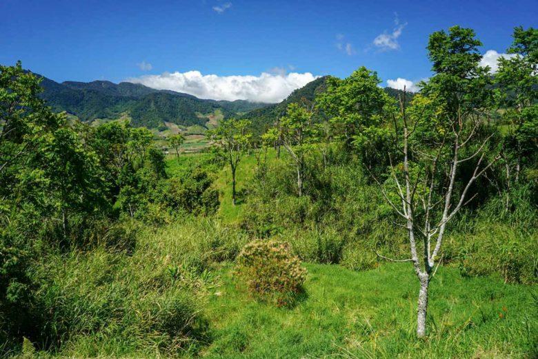 Hochland bei Cerro Punta in Panama