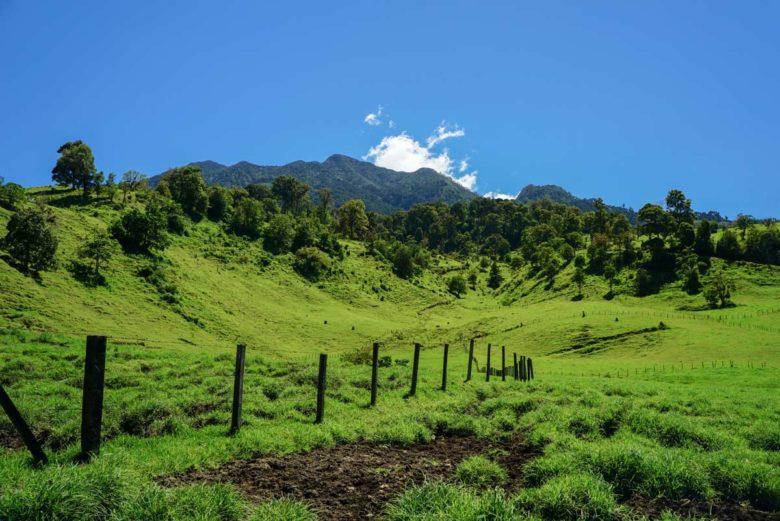 Hochland von Cerro Punta