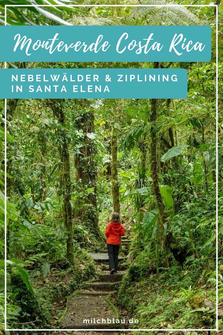 Monteverde Highlights: Nebelwälder und Ziplining in Santa Elena.