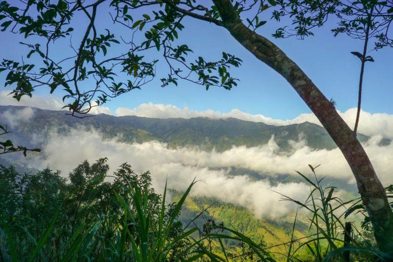 Nebelschwaden - Panamericana Costa Rica