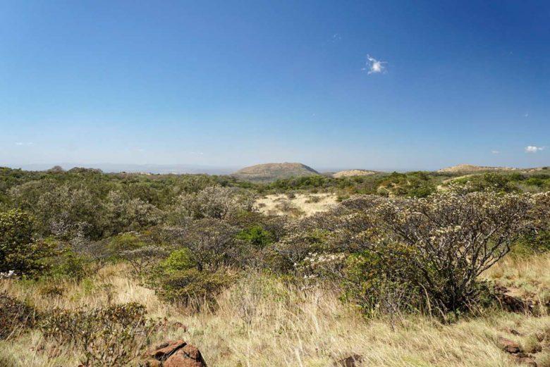 Savannenähnliche Ebene im Rincon de la Vieja Nationalpark