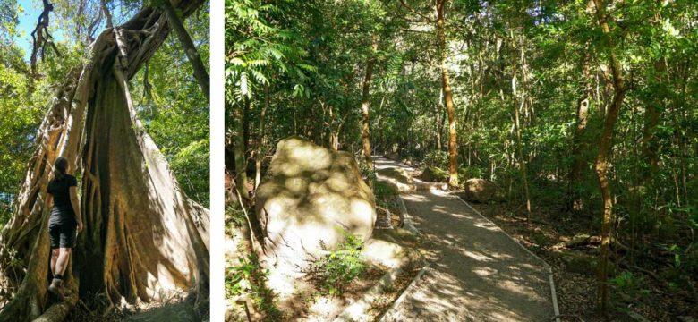 Befestigter Wanderweg im Rincon de la Vieja Nationalpark