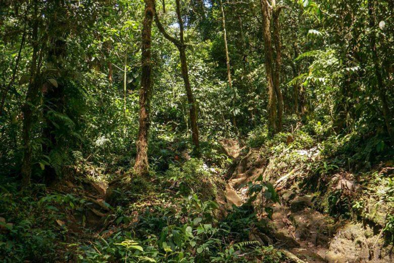 Wanderung auf den Cerro Chato