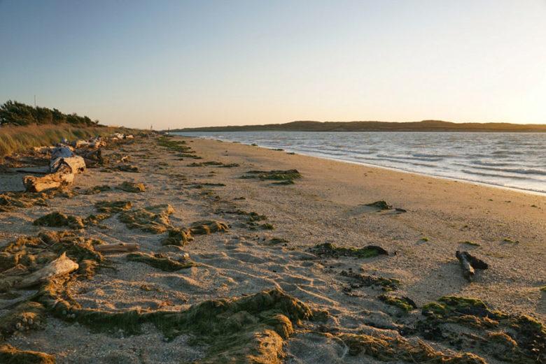 The Catlins Coast Sehenswürdigkeiten Strände