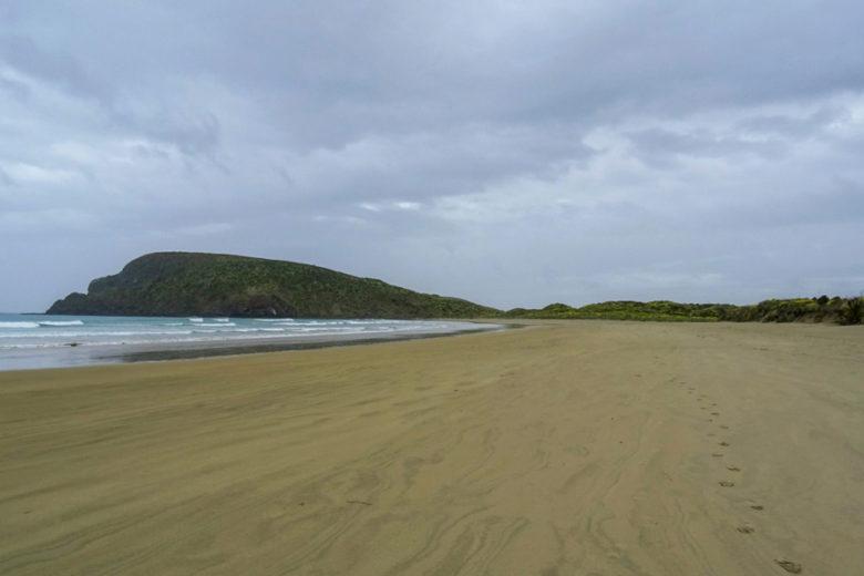 Catlins Coast Sehenswürdigkeiten Cannibal Bay