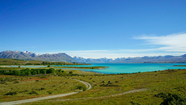 Lake Tekapo Lookout