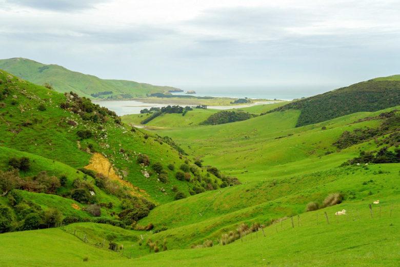 Otago Peninsula Neuseeland Route