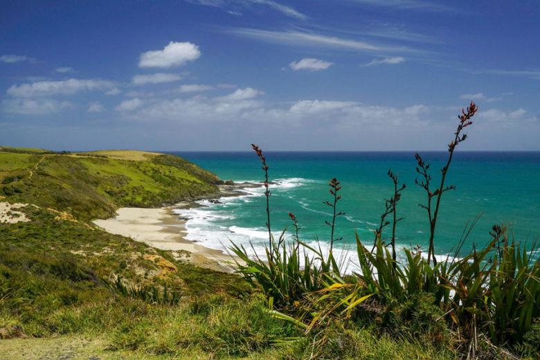 Hokianga Harbour Tipps Neuseeland