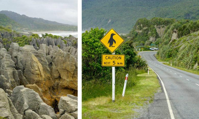 Neuseeland Tipps und Infos