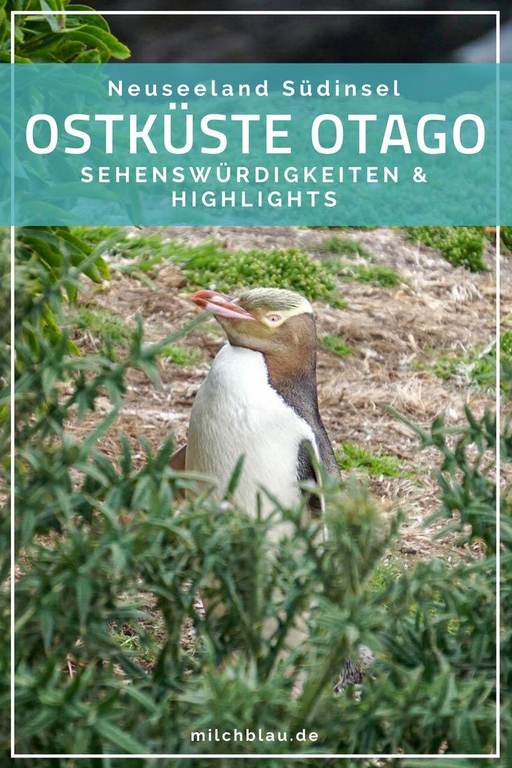 Eine faszinierende Tierwelt, Moeraki Boulders, Otago Peninsula und Dunedin erwarten dich an Neuseelands Ostküste der Südinsel. Sehenswürdigkeiten und Highlights in Otago.