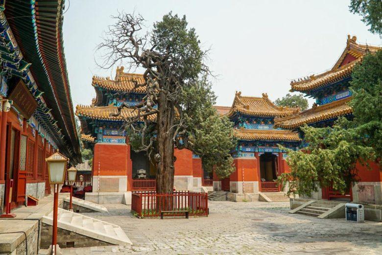 Konfuzius-Tempelanlage Beijing