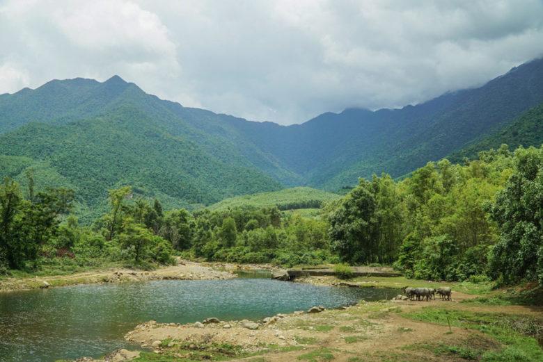 Vietnam Infos Landschaften