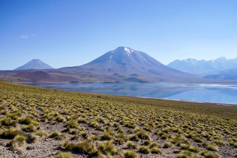 Laguna Miscanti - Atacama Wüste