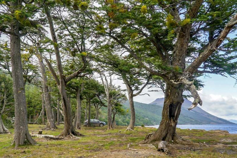 Chile Feuerland Lago Blanco Wildcamping