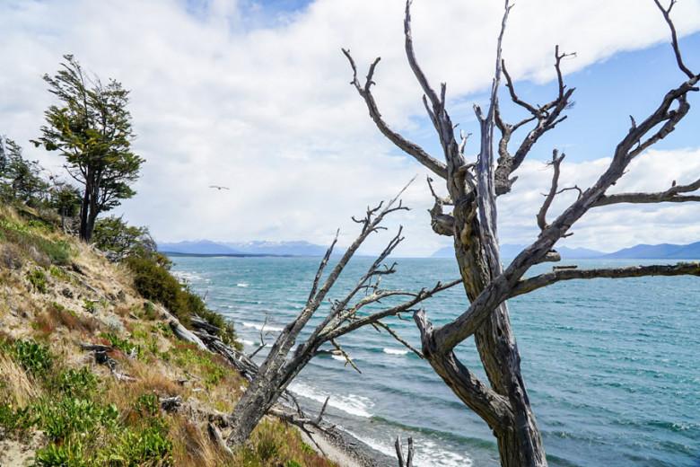 Feuerland Tierra del Fuego Lago Fagnano