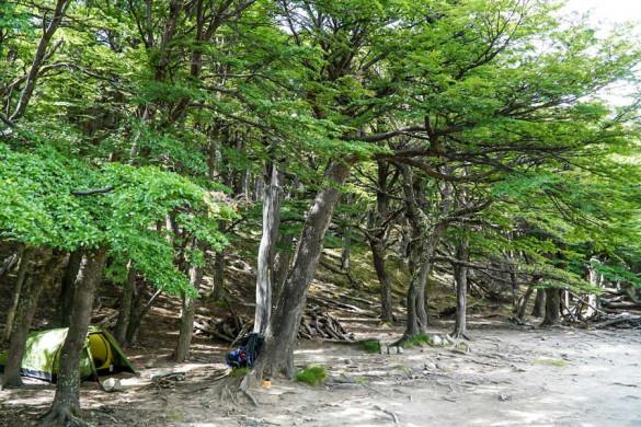 Camping Patagonien Campamento Poincenot El Chalten