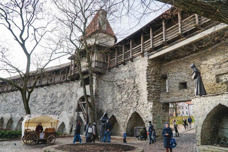 Tallinn Sehenswürdigkeiten Stadtmauer